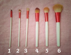 6 out of 7 of the essential makeup brushes